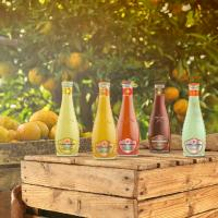 Italian Sparkling Drinks