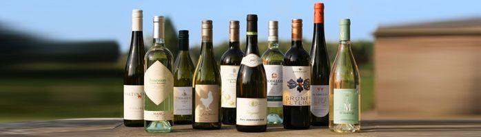 De lekkerste knisperend verse wijnen: onze nieuwe oogsten