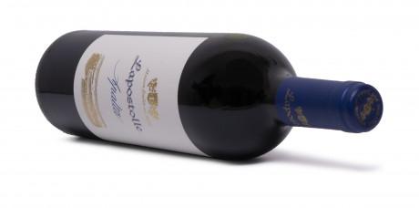 Lapostolle Apalta Single Vineyard