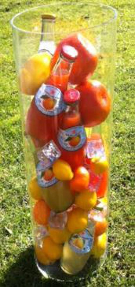 Sanpellegrino Sparkling Fruit Beverages Koker