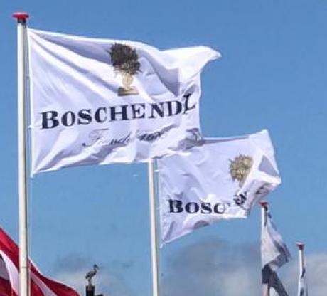 Boschendal Mastvlag